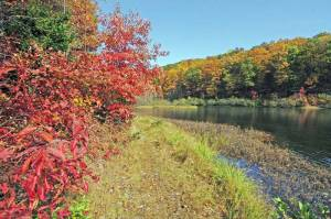 State foresters say foliage in Coopers Rock State Forest turned late this year and recommend a drive along Interstate 68 this weekend through the forest to see the best color of the season. (Photo courtesy West Virginia Department of Commerce)