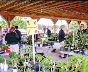 Master Gardeners assist customers at annual plant sale