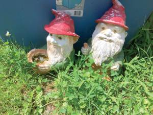 Flood gnomes
