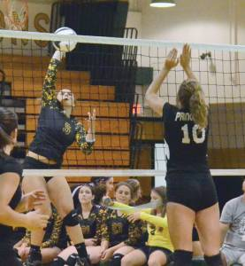 Greenbrier East's Maddie Cochran aims a shot at Princeton in action at the Spartan gym on Tuesday (Mark Robinson photo)