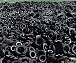 tire-collection-in-rainelle